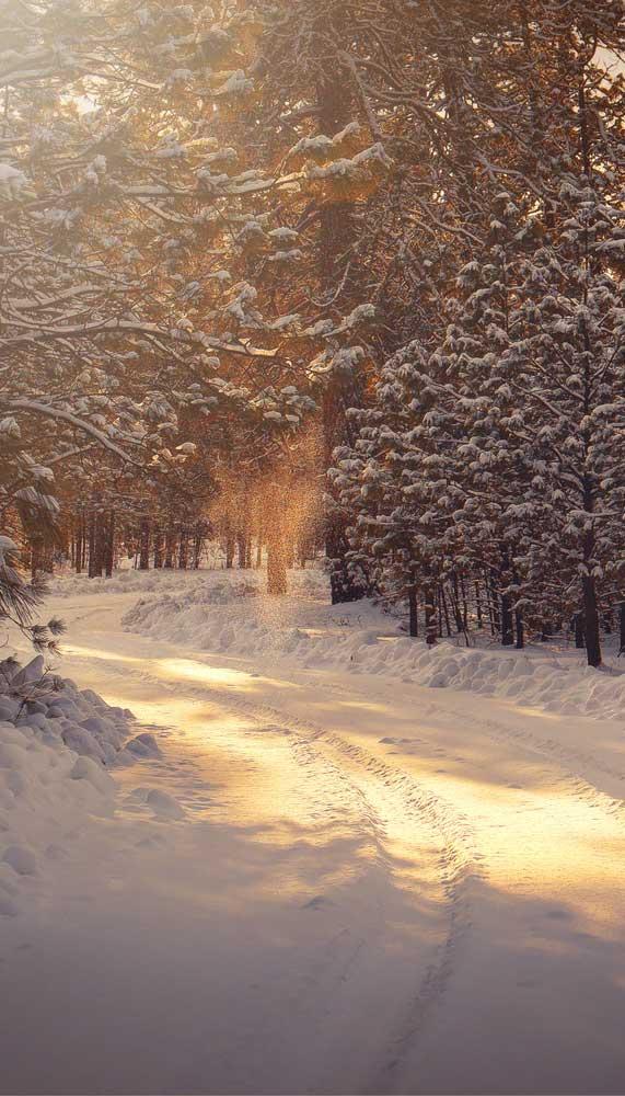 winter iphone wallpaper, snow iphone wallpaper, iphone wallpaper download free, winter wallpaper iphone, snow iphone wallpaper free, winter background iphone