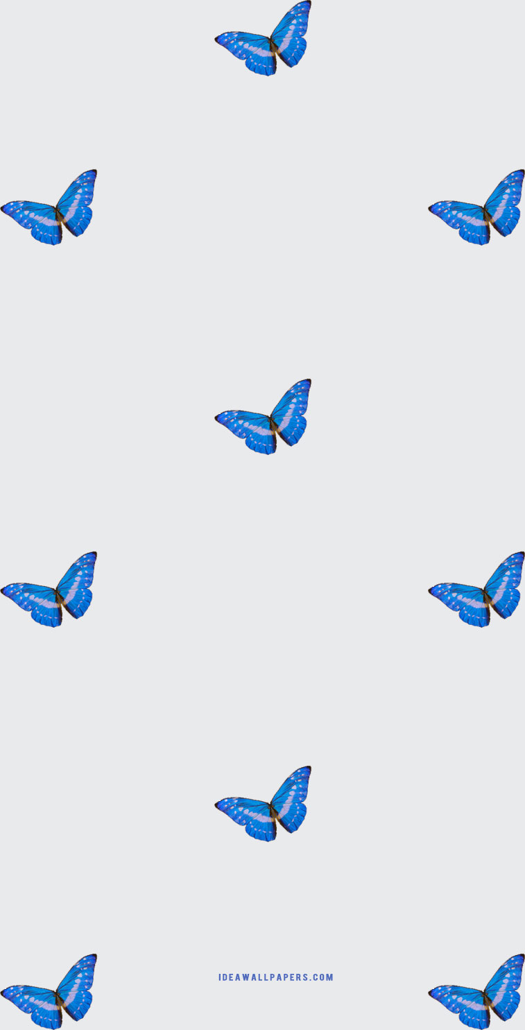 butterfly iphone wallpaper, butterfly iphone background , spring iphone wallpaper, butterfly drawing, iphone wallpaper butterfly, butterfly iphone background #butterfly #iphonewallpaper