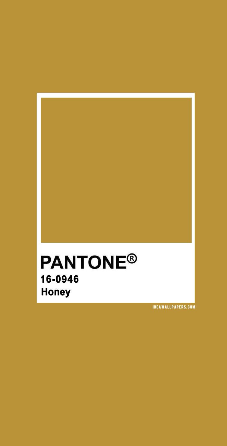 Pantone Honey : Pantone 16-0946 TCX Honey, pantone honey, beige #color #pantone pantone 2020, pantone color, pantone color 2020, pantone clothing, pantone palette, pantone paintpantone color of the year, pantone color of the year 2020, pantone colour of the year 2020