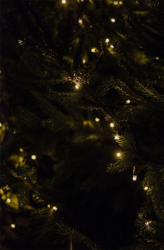 green wallpaper, christmas light on christmas tree, green leaves iphone wallpaper