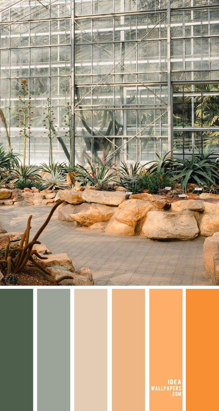 peach and sage color palette, peach and sage color combination, color combos, color scheme, peach color palette, earthy tone color palette