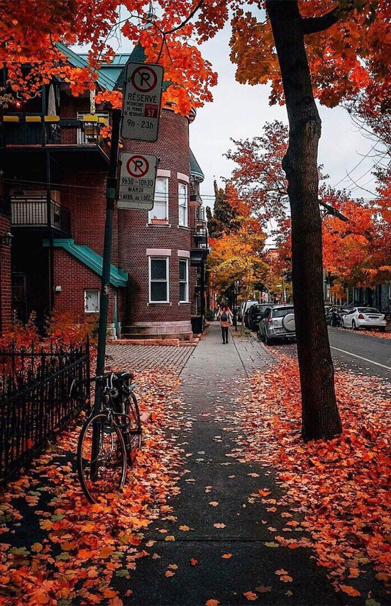 Many people include photos of their friends or family, aesthetic images,. autumn-aesthetic - Idea Wallpapers , iPhone Wallpapers ...