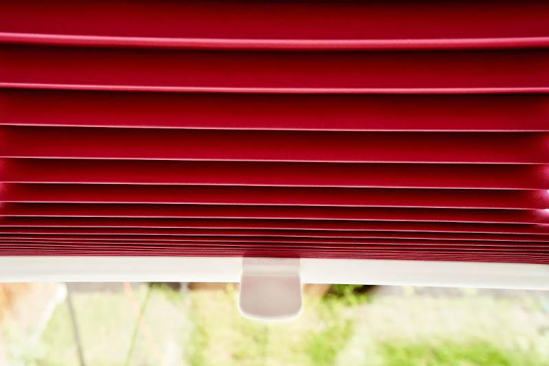 czerwona plisa