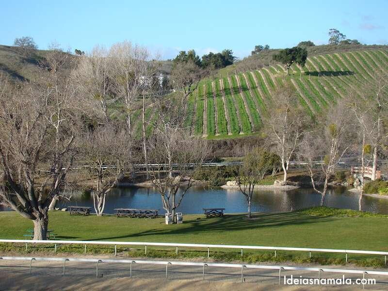 Vinícola Bridlewood em Santa Inez