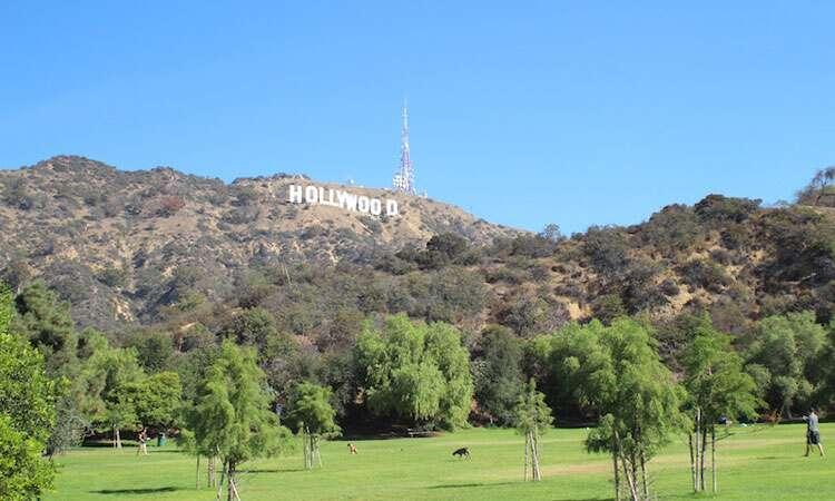 Placa de Hollywood vista do parque de cachorros
