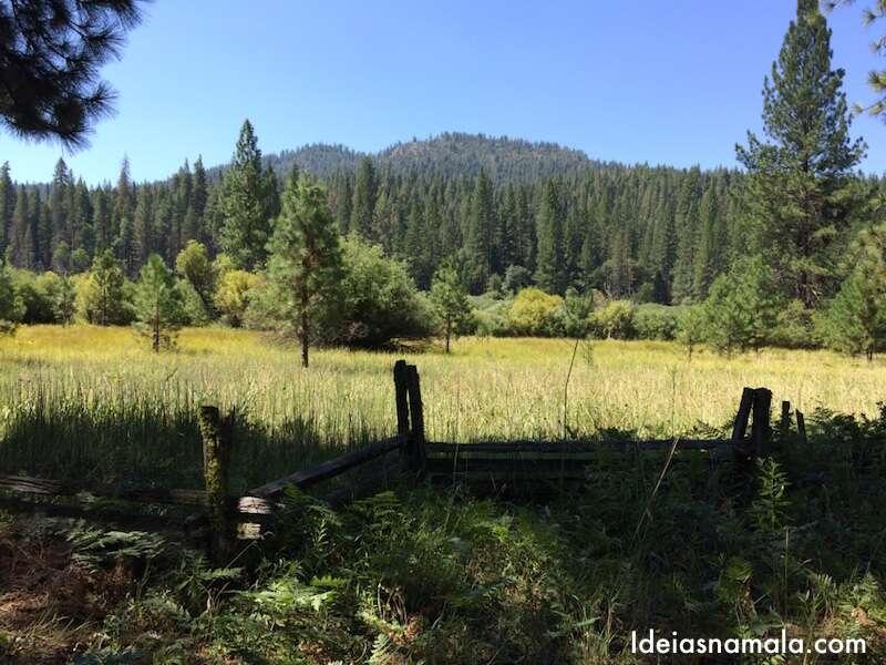 Wowona - Yosemite