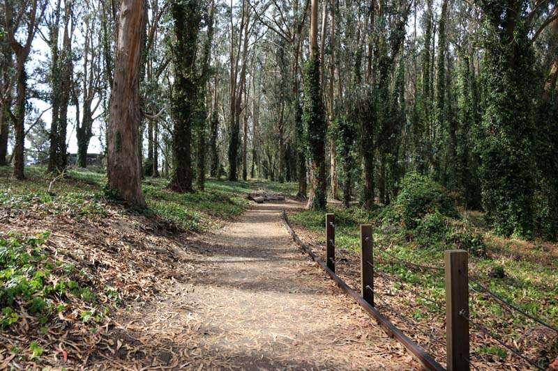 Parque Presidio - San Francisco