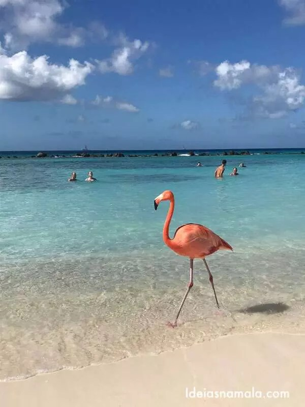 Renaissance Aruba