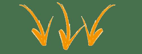 Curso Completo De PNL – Programação Neurolinguística com André Percia