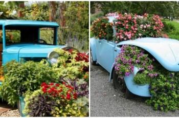 Idei geniale cu masini parasite transformate in jardiniere