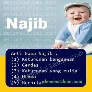 arti nama Najib