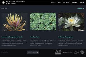 Aquarium and Pond Plants of the World