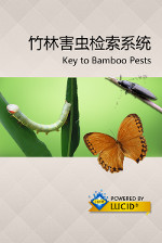 Bamboo pests of China Lucid mobile app splash screen