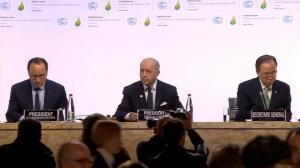 Apertura COP 1