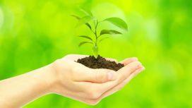 11220-encuentro-regional-educacion-ambiental-noa-en-salta