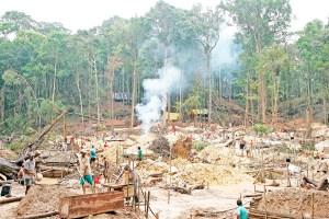 Deforestacion-extraccion-de-oro