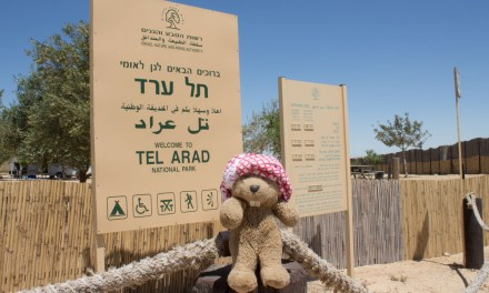 Avant même que le mot « palestine » existe, les juifs cultivaient le CANNABIS au sud D'ISRAËL