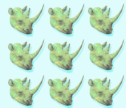много носорогов с тенью
