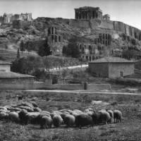 Μια ματιά στην καθημερινότητα της παλιάς Αθήνας