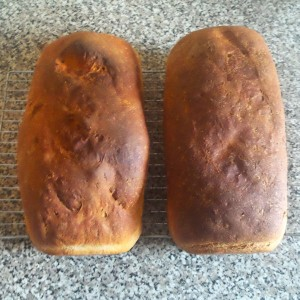 bread_loaves-300x300