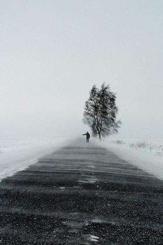 Snow IPhone Wallpaper IDesign IPhone