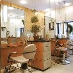 Peluang Usaha ~ 25 Direktori Bisnis Waralaba Jasa Salon Kecantikan