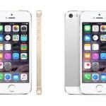 iPhone 6c, Rumor