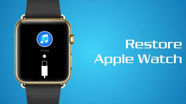 Restore bundles for apple watch apple internal software leaked