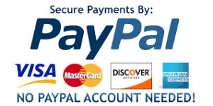 Secure Donations Visa Mastercard PayPal Discouver Amex Cheque Check IDIDIT Foundation