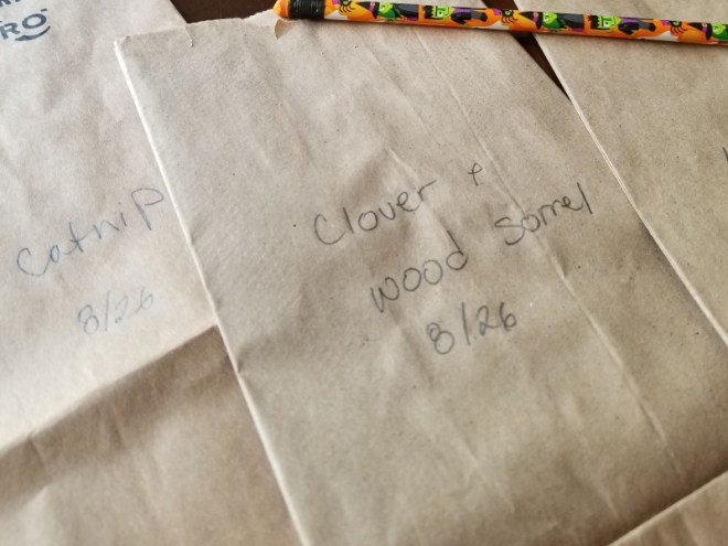Labelled Paper Bags
