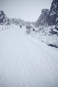 Thingvellir snow
