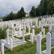 Graves everywhere