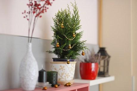 5 Άμεσες αλλαγές που θα προετοιμάσουν το σπίτι σας για τις γιορτές