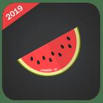 Melon VPN Mod Apk