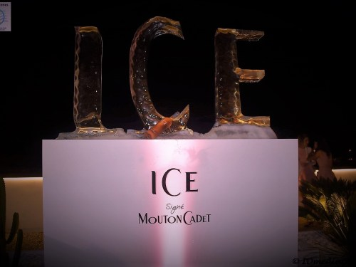 ICE POOL PARTY & Mouton Cadet