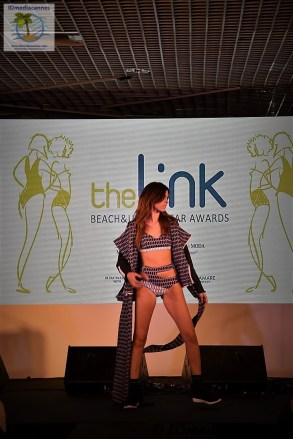 The Link Awards (56)