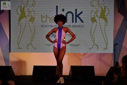 The Link Awards (66)