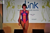 The Link Awards (72)