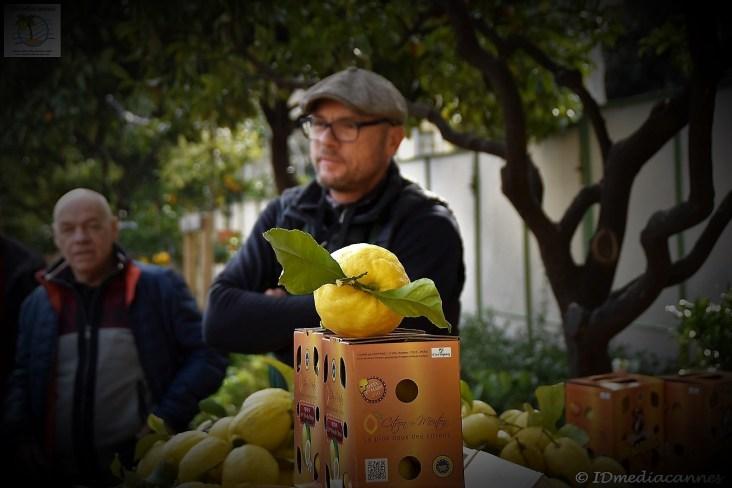 fete-du-citron