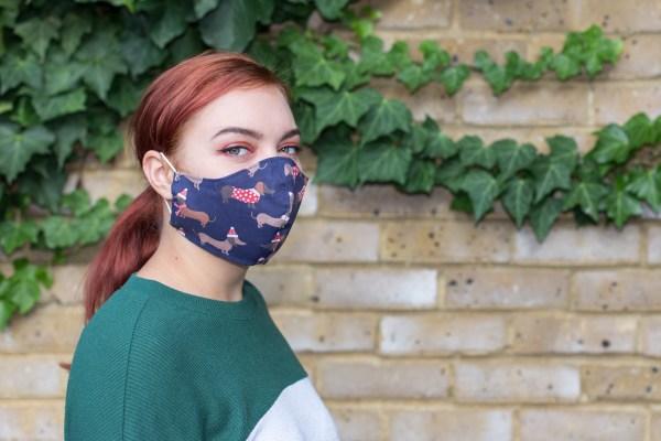 Christmas face masks