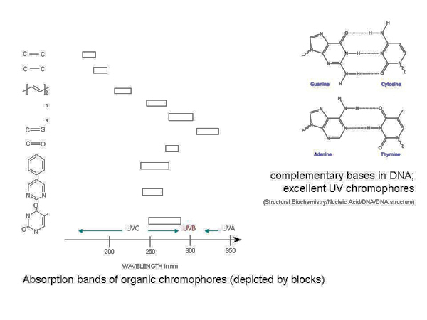 Chromophores and their absorption bands. (adapted from Jagger 1967)