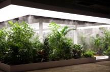 http---hypebeast.com-image-2017-06-doug-aitken-garden-aros-triennial-aarhus-denmark-2