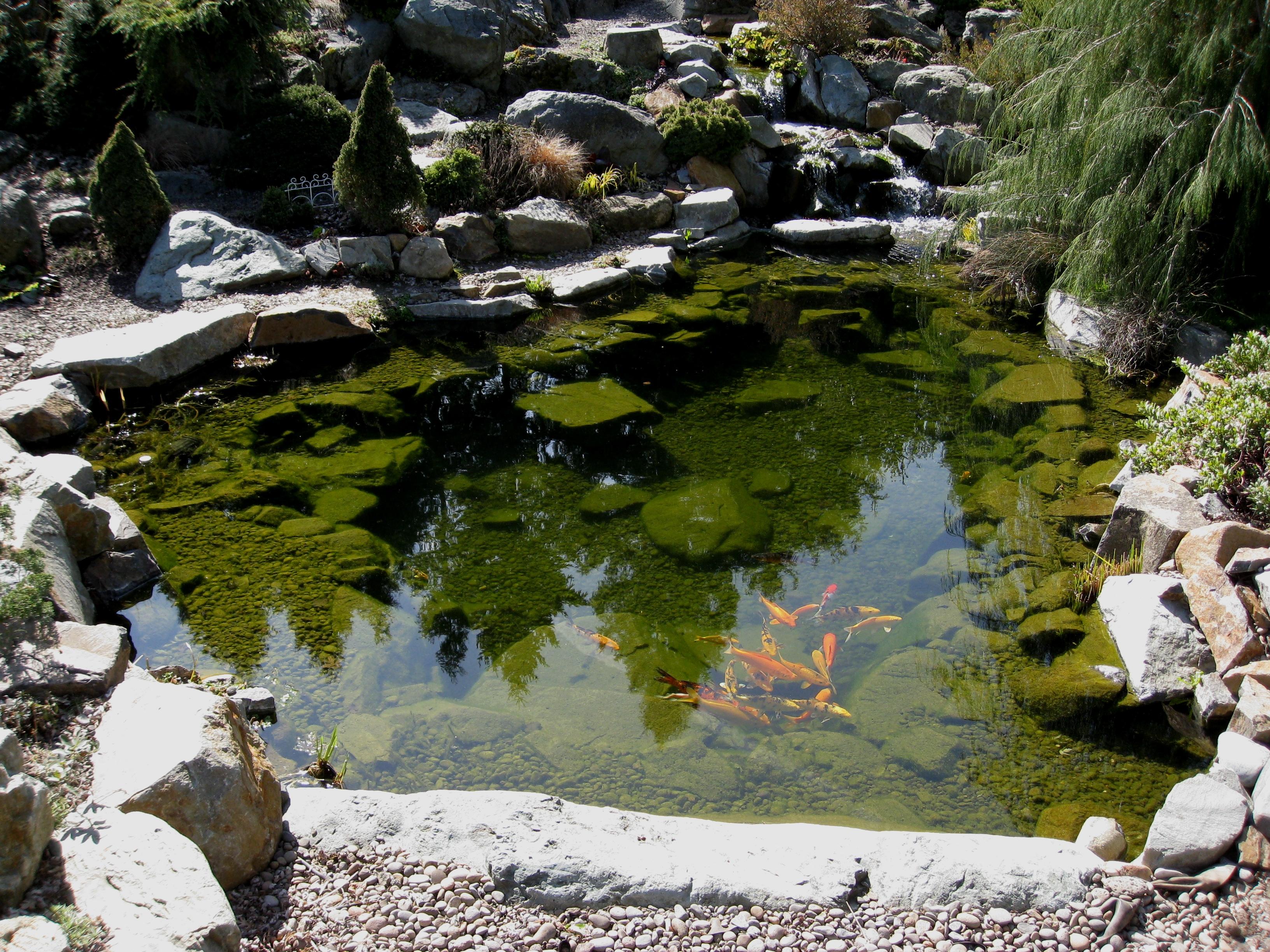 20 Koi Pond Ideas To Create A Unique Garden - I Do Myself on Koi Ponds Ideas  id=71220