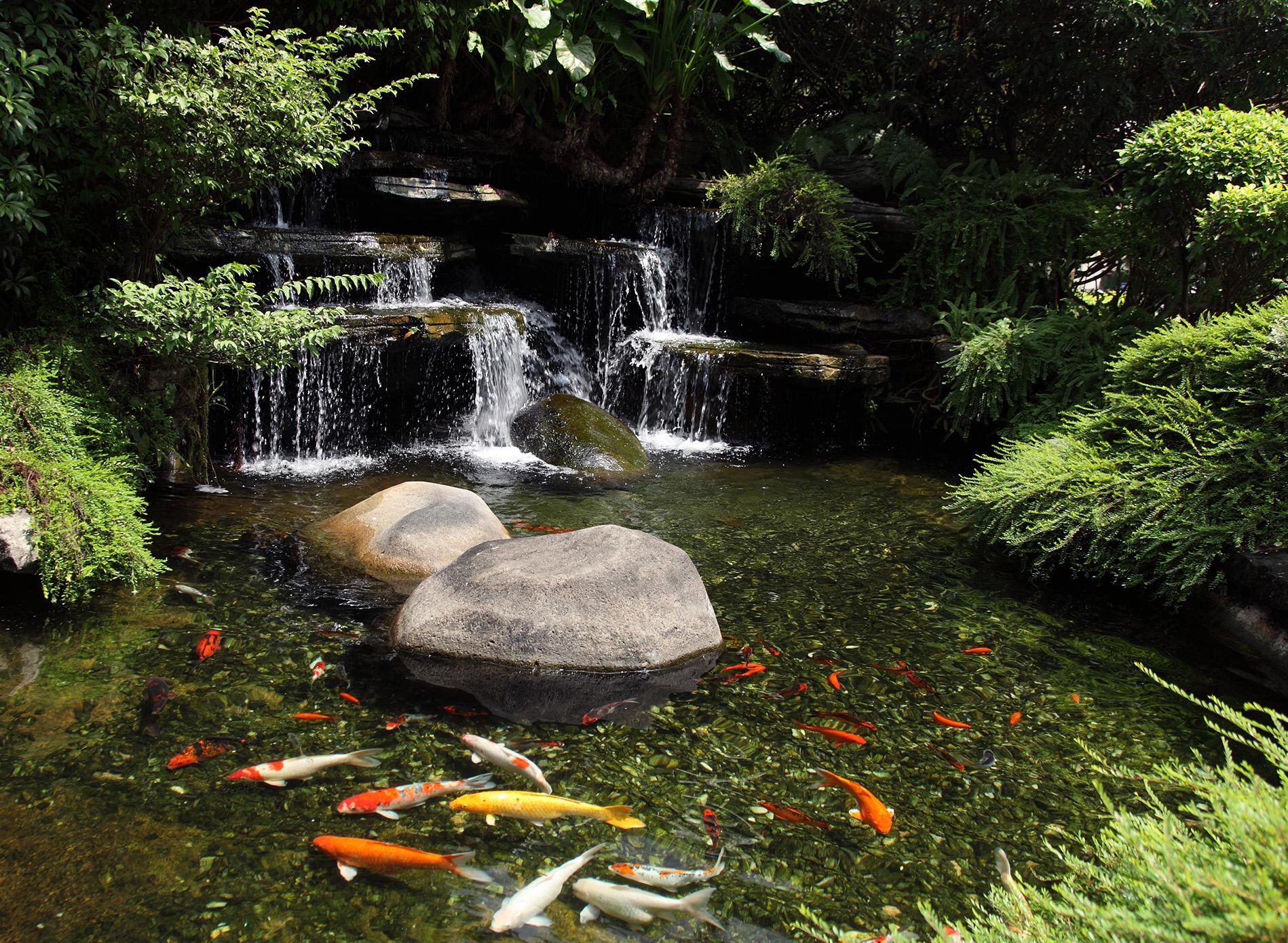 20 Koi Pond Ideas To Create A Unique Garden | I Do Myself on Koi Ponds Ideas  id=78991