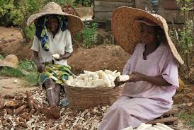 Farmers in Ogun state