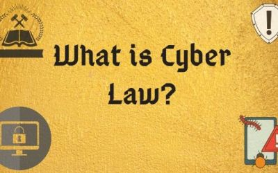 An Ultimate Guide to a Successful Career in Cyber Law
