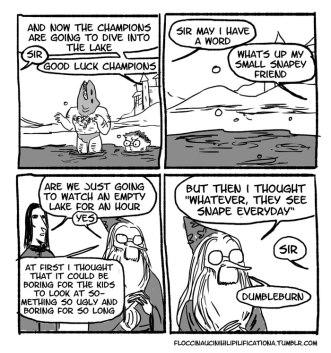 irresponsible-dumbledore-funny-harry-potter-comics-floccinaucinihilipilificationa-6__700