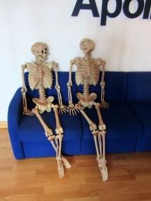 skeletons_in_reception
