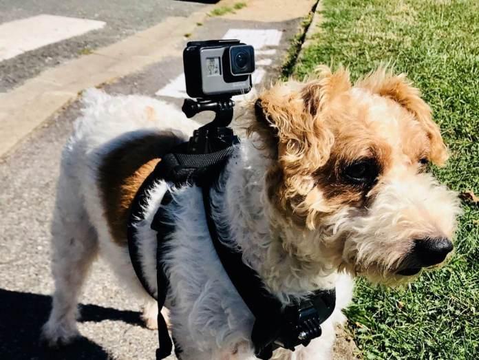 Caméra GOPRO les Accessoires indispensables pour actioncam