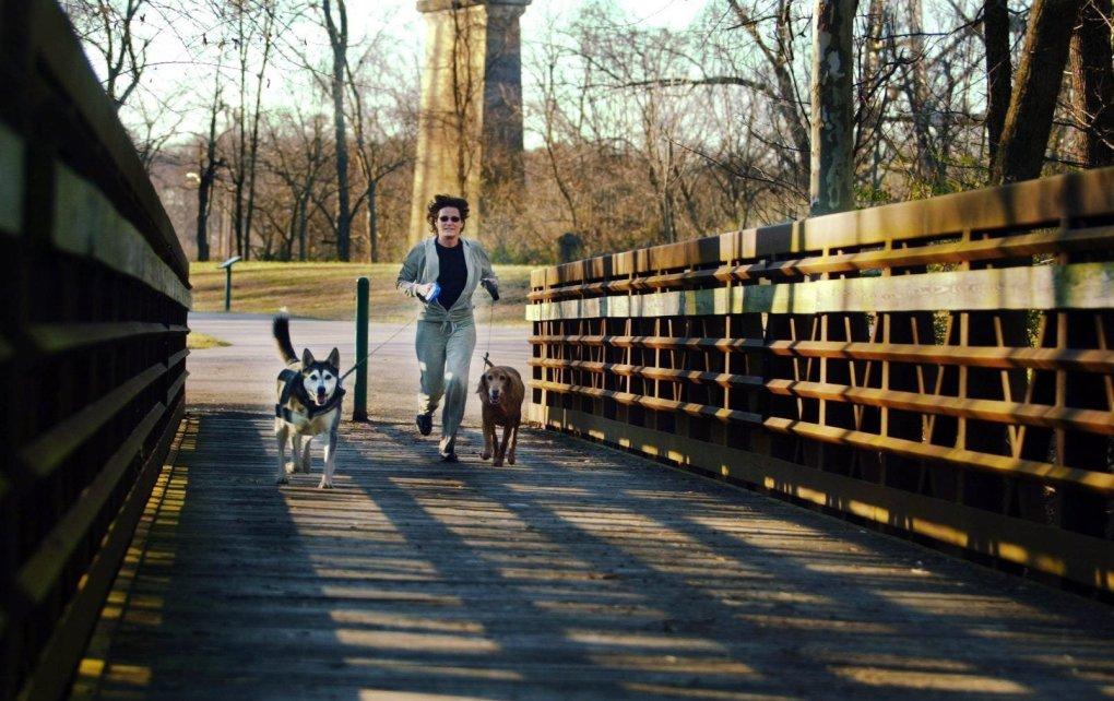 Tracy Gatlin court avec ses chiens Kojak, à gauche, et Redkin le long de la Shelby Bottoms Greenway le 26 décembre 2003. (via Reuters)